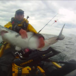2015 Fish of the Year – Graham Smith Porbeagle Shark